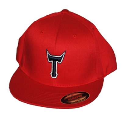 """T"" (Fitted)"