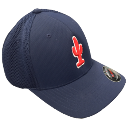 Cactus (Meshback Fitted)