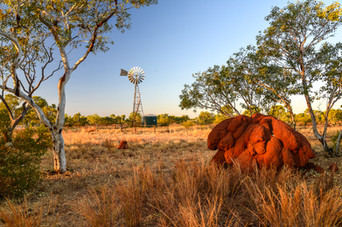 Outback Ant Hills