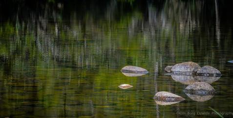 Serenity in the Stream