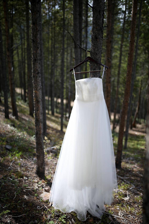 Colorado Wedding Planner - Colorado Wedding Dress