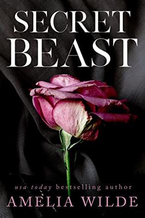 Secret Beast Review