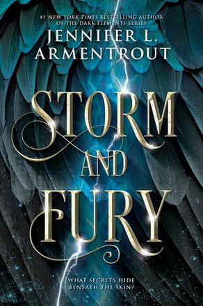 Storm and Fury Review