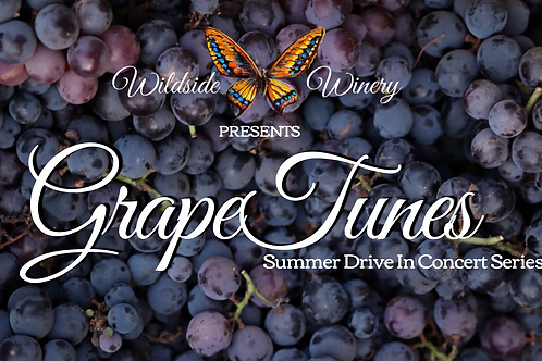 GrapeTunes: Drive-In Concert Experience w/Hillbilly J.E.D.