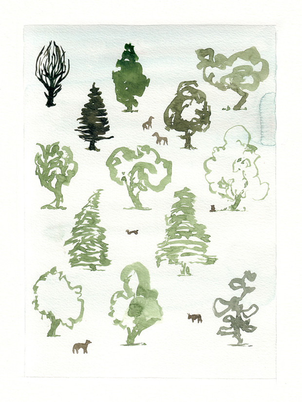 The forest is a pattern