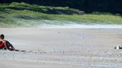 praia e restinga