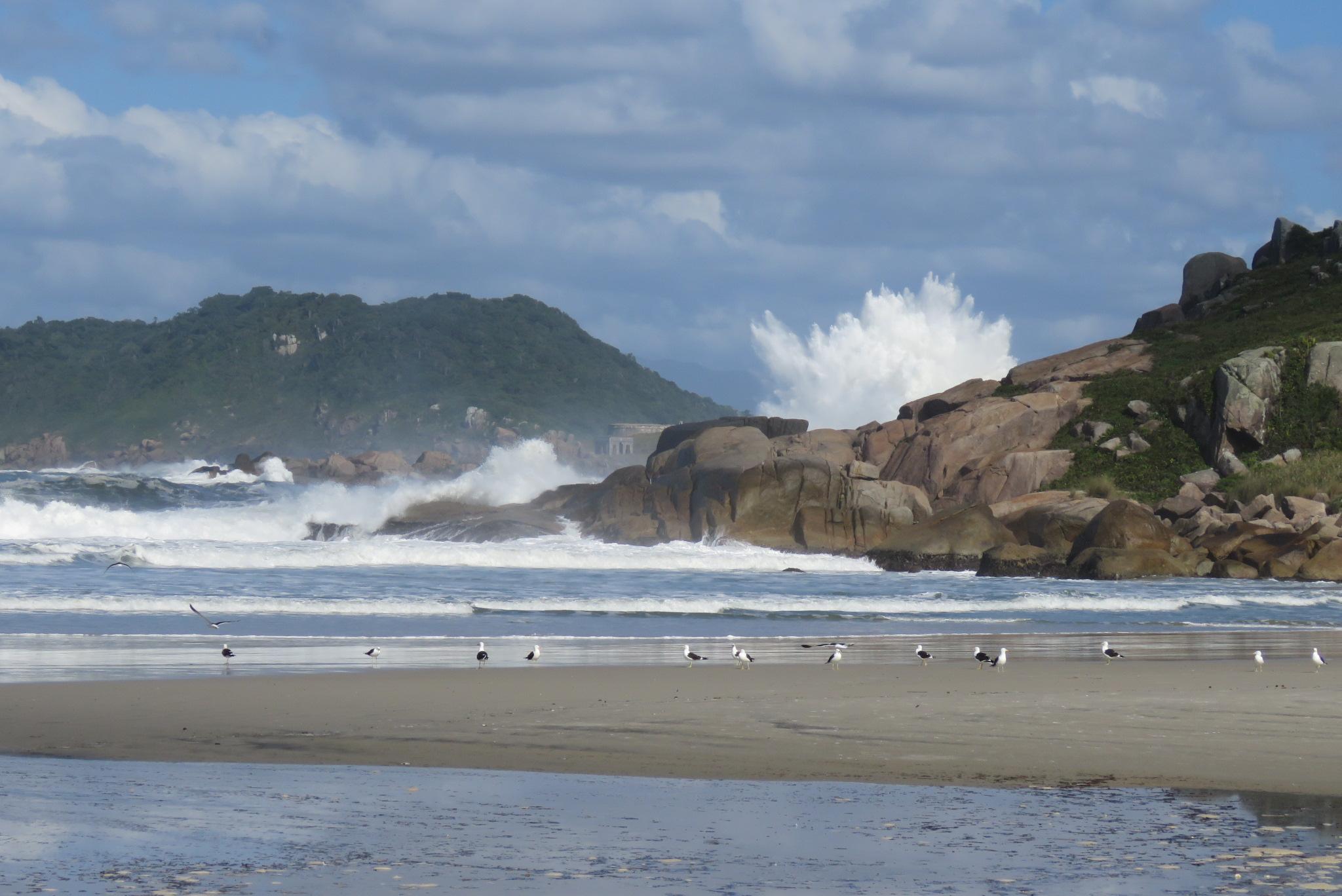 Costão Rochoso e ondas...