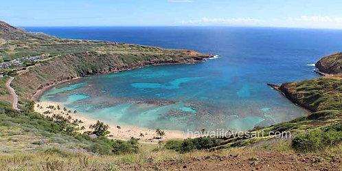 14x28 Panorama Hanauma Bay
