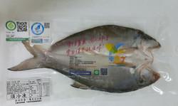 楊傳章-午仔魚一夜干