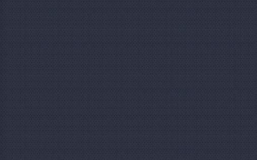 רקע חד.jpg