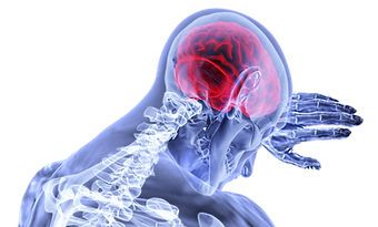 brain-3168269_1920.png