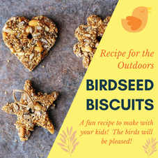Bird Seed Biscuits