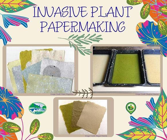 Invasive Plant Papermaking