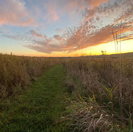 Scotia Region Declared a Natural Heritage Area