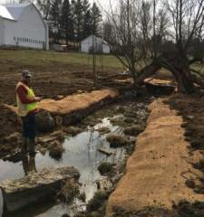 Stream and Farm Restoration Update: Radzwich Farm