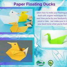 Paper Floating Ducks