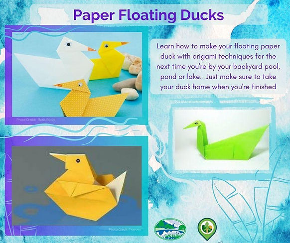 Paper Floating Ducks