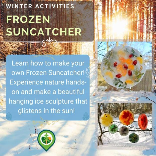 DIY Ice Suncatcher