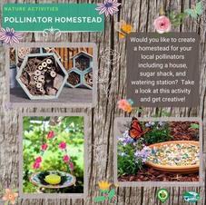 Pollinator Homestead