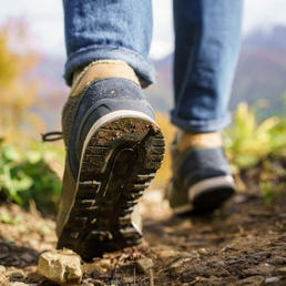 2017: Guided Hikes Offered