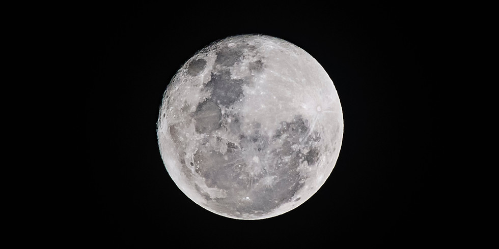 Adventures in Conservation: January Full Moon Hike