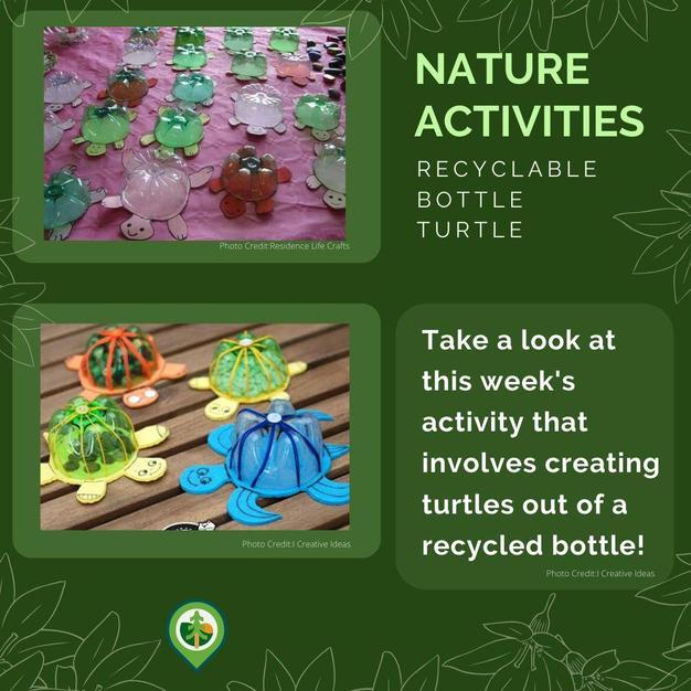 Recyclable Bottle Turtle