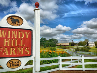 ClearWater Conservancy Awarded Grant to Conserve Windy Hill Farm