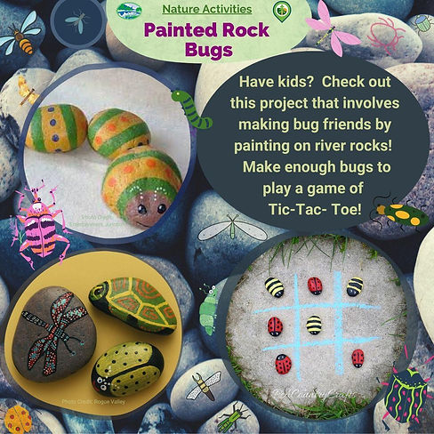 Painted Rock Bugs