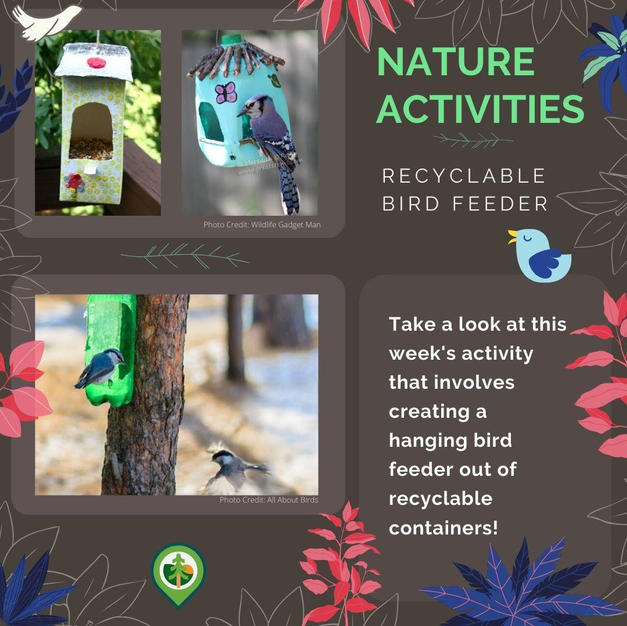 Recyclable Bird Feeder