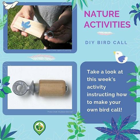 DIY Bird Call