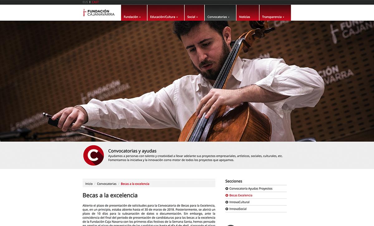 Web. FundacionCajaNavarra.2