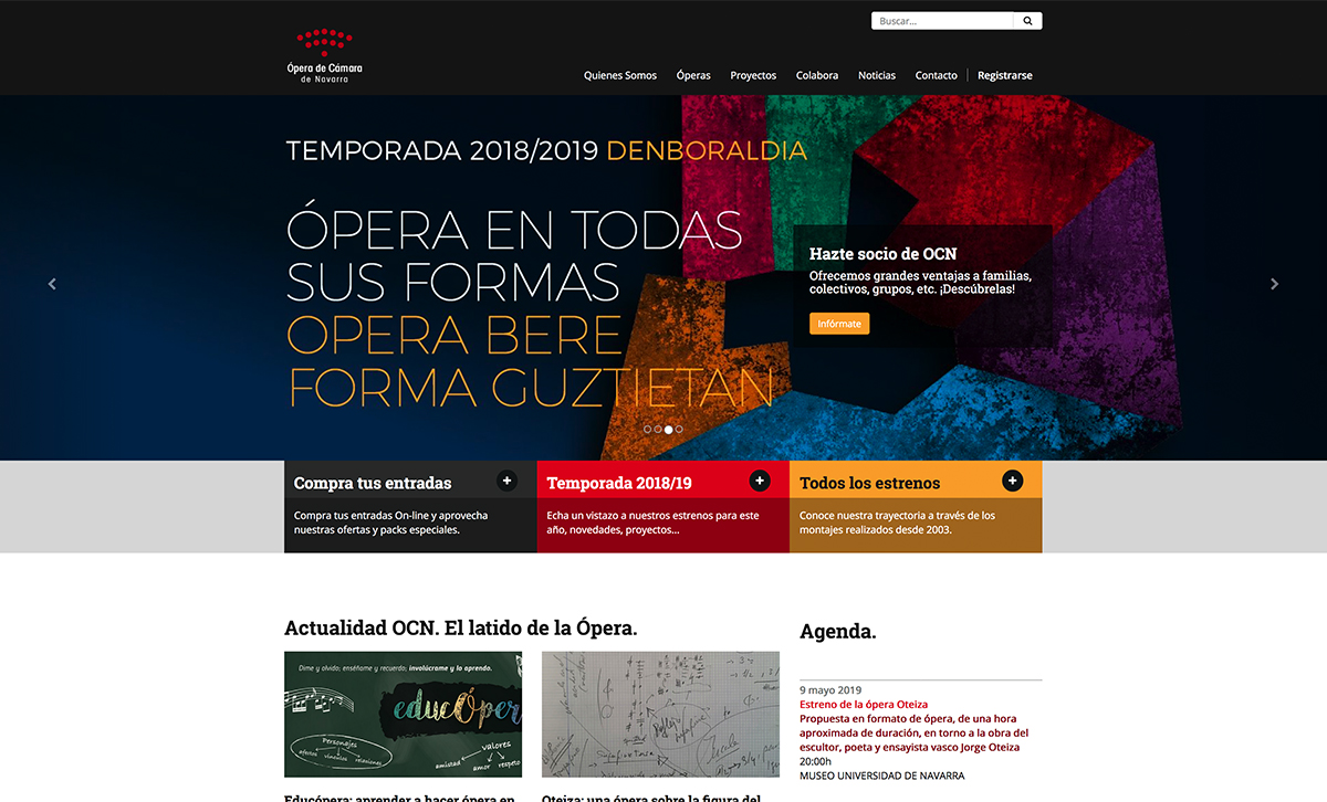 diseño_web_OCN1