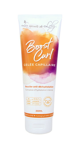 Les Secrets de Loly - Boost Curl 250ml