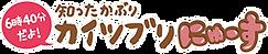 logo_kn.png