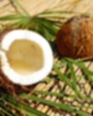 coconut-1501334_1920.jpg