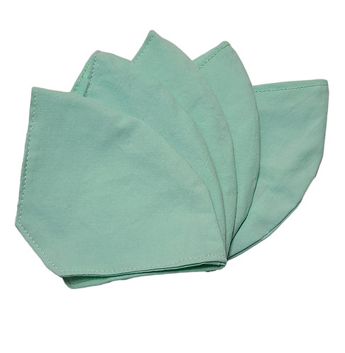 Face Mask (Mint)