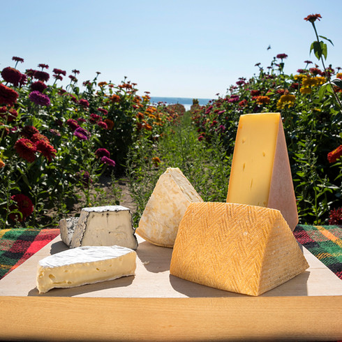 Fromages au champ