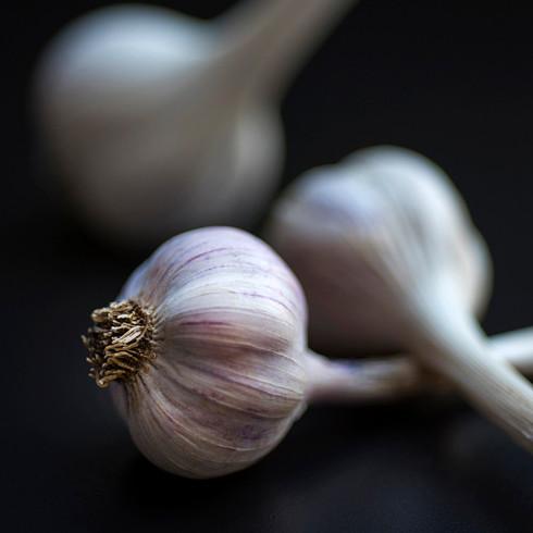 Ail frais - Plumes et Légumes