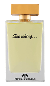 searching-22.png