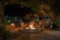 Campfire Thornicroft.jpg