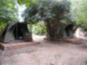 Thornicroft Tent.jpeg