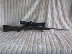 P1020004.JPG
