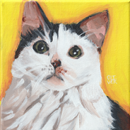 abby painting