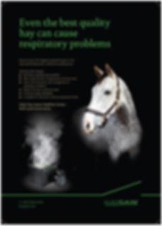 haygain equine steamer advert