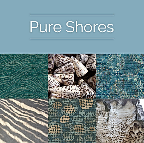 PURE-SHORES-BOX-V2.jpg