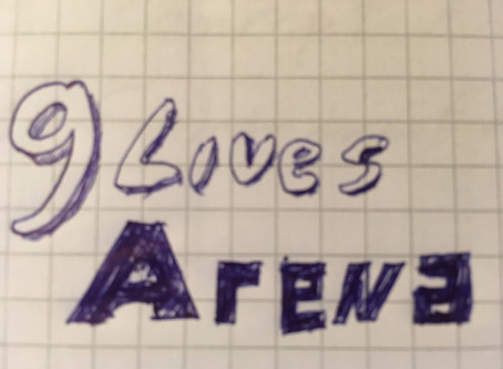 How it all began in 2015...the birth of the idea for 9Lives Arena!