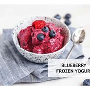 Blueberry Frozen Yoghurt.jpg