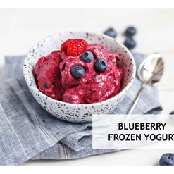 Blueberry Frozen Yoghurt.jpg
