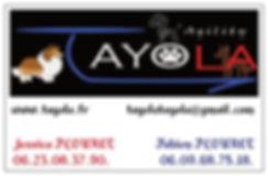 Carte visite Tayola