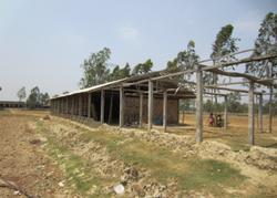 Sundarban-2.png
